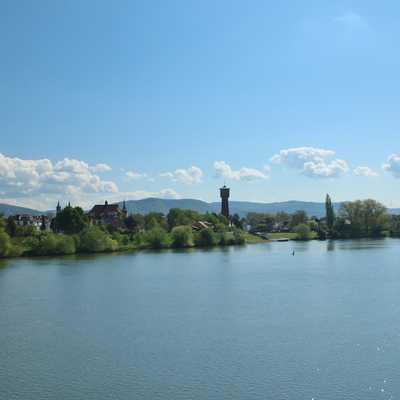 Blick vom Neckar auf Ladenburg