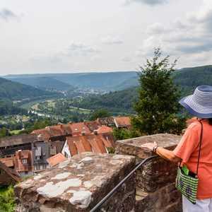Blick in Tal (Quelle:Stadt Neckargemünd/Andreas Held)