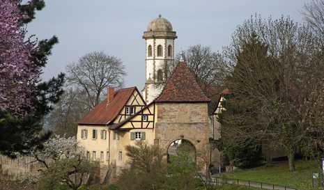 Sinsheim_11042125.jpg