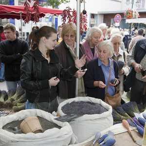 Weinheimer Herbst mit Provence Markt (Foto: Bernhard Kreutzer, Quelle: Landratsamt Rhein-Neckar-Kreis)