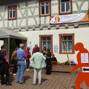 Informationszentrum zur Fundgeschichte des Homo heidelbergensis, Mauer